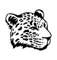 Tribal jaguar vector image vector image