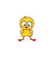 flat cute chicken chick standing vector image vector image