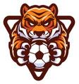 tiger football soccer mascot vector image vector image