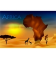 africa savannah fauna and flora vector image