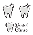 Dental clinic logo template Human tooth with vector image
