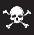 jolly roger human skull with crossbones isolated vector image vector image