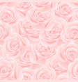 pink rose seamless background vector image