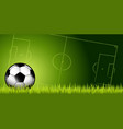 soccer ball in the grass vector image