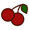 a pair cherries on white background vector image