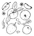 apples whole and cut into slices berries and spic vector image vector image