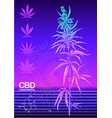 hemp cannabis plant template poster card vector image vector image