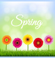 spring banner with flowers vector image vector image