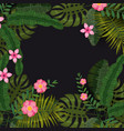 summer exotic plants and hibiscus flowers tropical vector image vector image