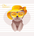 summer fashion terrier puppy dog in sweet retro vector image vector image
