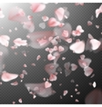 Bright cherry petals fall down EPS 10 vector image vector image