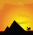camels with pyramide in desert vector image