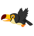 cartoon bird toucan flying vector image vector image