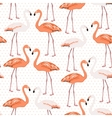 Exotic flamingo wading bird couples beak to beak vector image vector image
