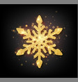 glitter covered gold snowflake with on transparent vector image