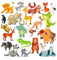 Set of funny animals birds and reptiles vector image