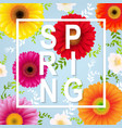 spring flower spring banner vector image vector image