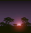 sunset scene african landscape with silhouette vector image