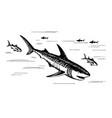 marine fish predators vector image