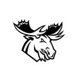 angry moose or elk looking to side mascot black vector image vector image