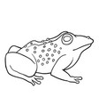 coloring book toad vector image vector image