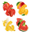 fruits and berries in splash of juice mango vector image vector image