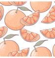 Grapefruit seamless pattern vector image vector image