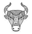 Head Buffalo style zentangle vector image
