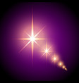 shiny stars on a purple background vector image