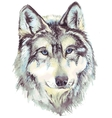 Wolf head profile vector image