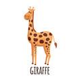 cute giraffe in flat style vector image