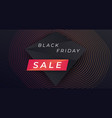 black friday sale wide banner vector image