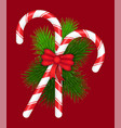 christmas candy cane lollypop and fir branches vector image vector image