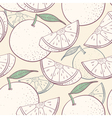 Grapefruit stylized seamless pattern vector image vector image