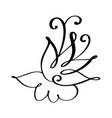 hand drawn flourish calligraphy elements vector image vector image
