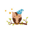 lovely little owlet wearing blue hat sleeping on a vector image