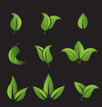 set of green leafs icons elements vector image