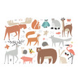 big collection wild forest animals clipart vector image