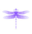 blue stilized dragonfly insect logo design vector image