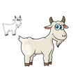 Cartoon horned farm goat vector image vector image