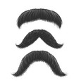 comic mustaches set vector image