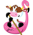 cute cow floating on inflatable flamingo vector image