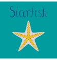 flat on background tropical starfish vector image vector image