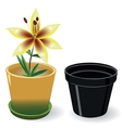 Growing flower in a pot and black empty pot vector image