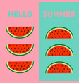 hello summer watermelon fruit icon set red slice vector image vector image