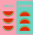 hello summer watermelon fruit icon set red slice vector image vector image