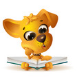 yellow dog reading open book vector image vector image