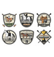 horse jockey polo or riding club sport equipment vector image vector image