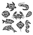 Marine Animals Vintage Stamp Collection vector image