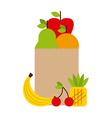 nutritional food design vector image vector image